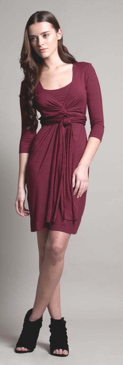 dote-madison-nursing-dress-2.jpg