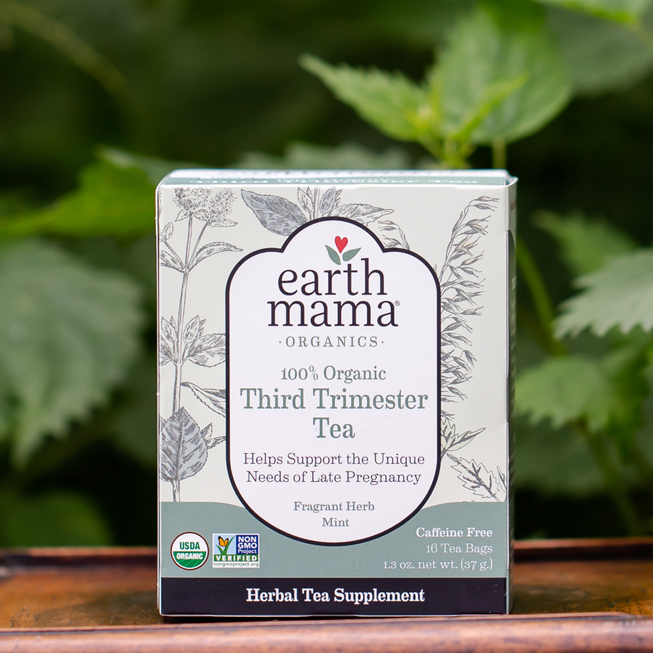 earth-mama-organic-third-trimester-tea-2
