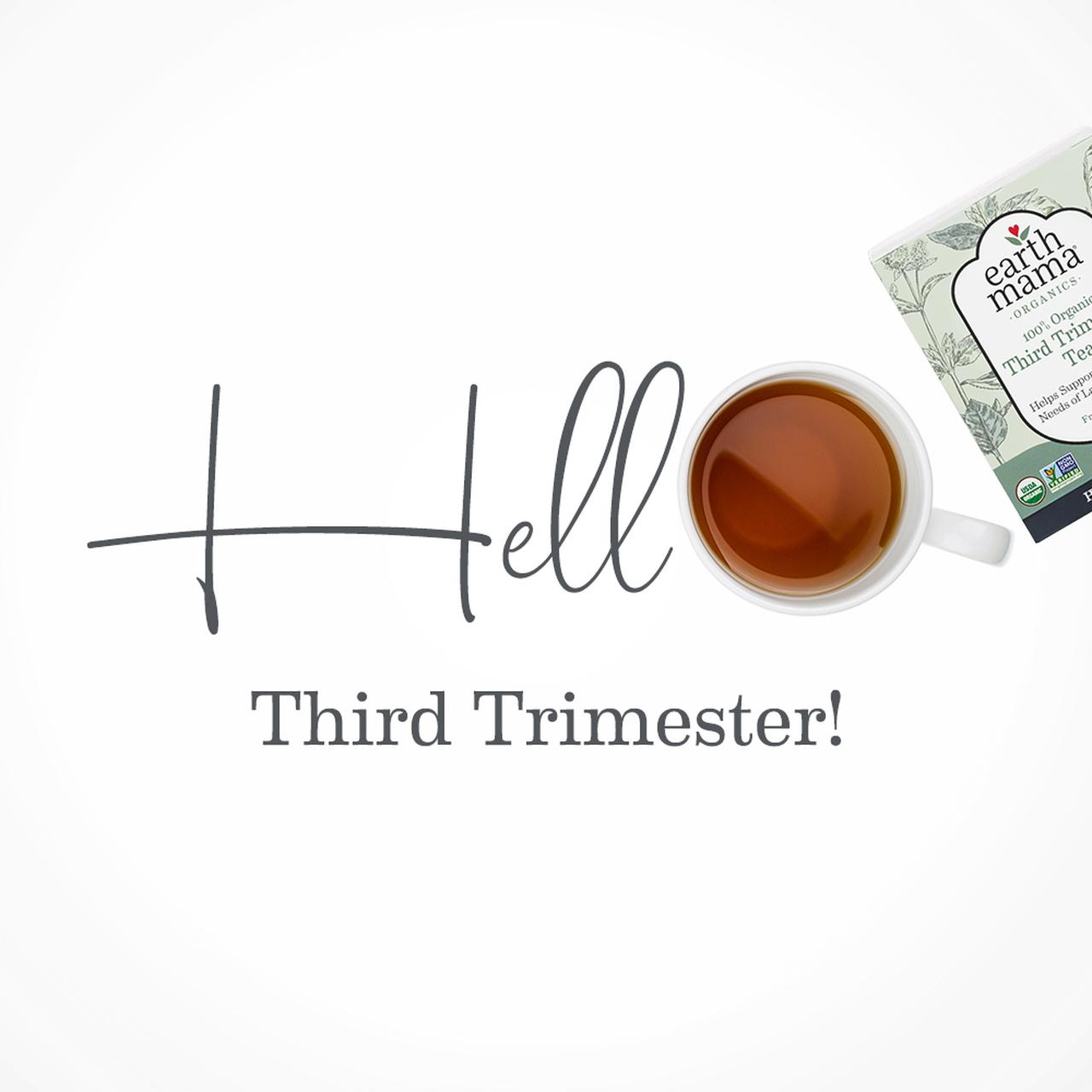 earth-mama-organic-third-trimester-tea-4